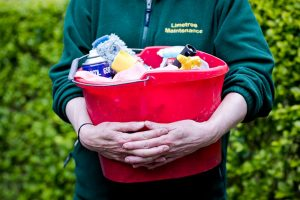 Limetree-Cleaning-1