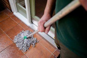 Limetree-Mopping-2